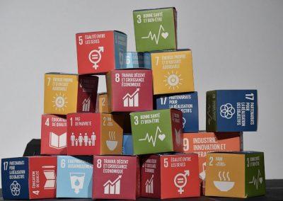 4ème anniversaire des objectifs de développement durable